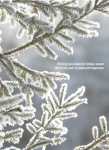 National Arbor Day Foundation 2012 Holiday Card
