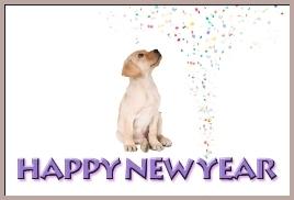 North Shore Happy New Year Puppy.260border