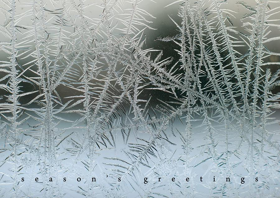 prostate-frost-2016